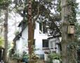 Verträumtes Einfamilienhaus in ruhiger Wohnlage in Schnelsen